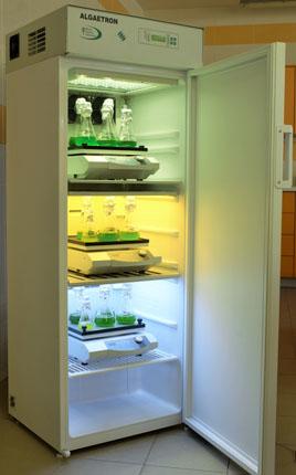 Câmaras/incubadoras para crescimento de plantas/algas, com ou sem agitação incorporada