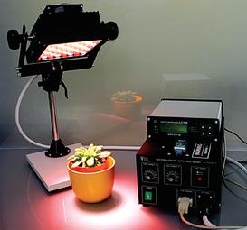 Fontes de luz LED, diversas configurações/cores, para câmaras de crescimento de plantas/algas, casas de vegetação, etc
