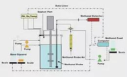 Solida Biotech